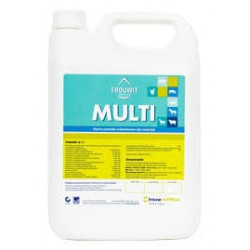 TROUWIT Multi multiwitamina 1L