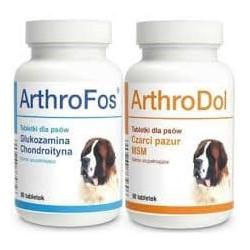 DOLFOS ARTHROFOS 90 TBL+ARTHRODOL 90TABL NA STAWY