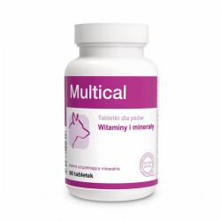 DOLFOS Dolvit Multical 90 tabletek