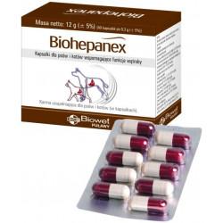 BIOWET Biohepanex - na wątrobę 40 kapsułek