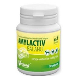 VETFOOD Amylactiv Balance 30 kapsułek