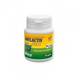 VETFOOD Amylactiv Digest 30 kapsułek