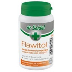 DR SEIDEL Flawitol - szczenięta dużych ras 60 tabl