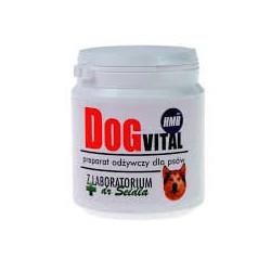 Dog Vital preparat odżywczy z HMB 300g dla psów