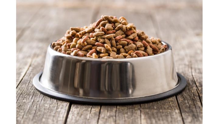 Czym się kierować wybierając suchą karmę dla psa?